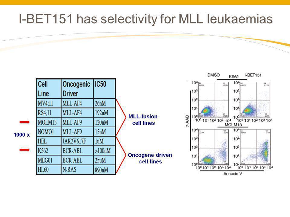 I-BET151 has selectivity for MLL leukaemias