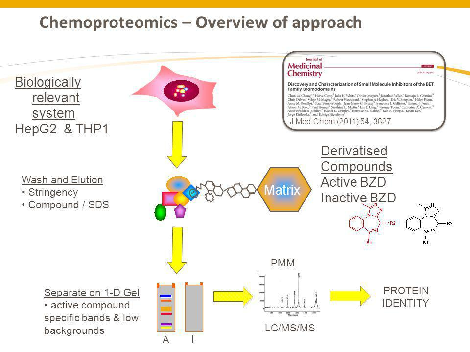 Chemoproteomics – Overview of approach