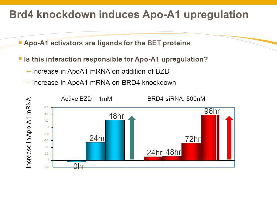 Brd4 knockdown induces Apo-A1 upregulation
