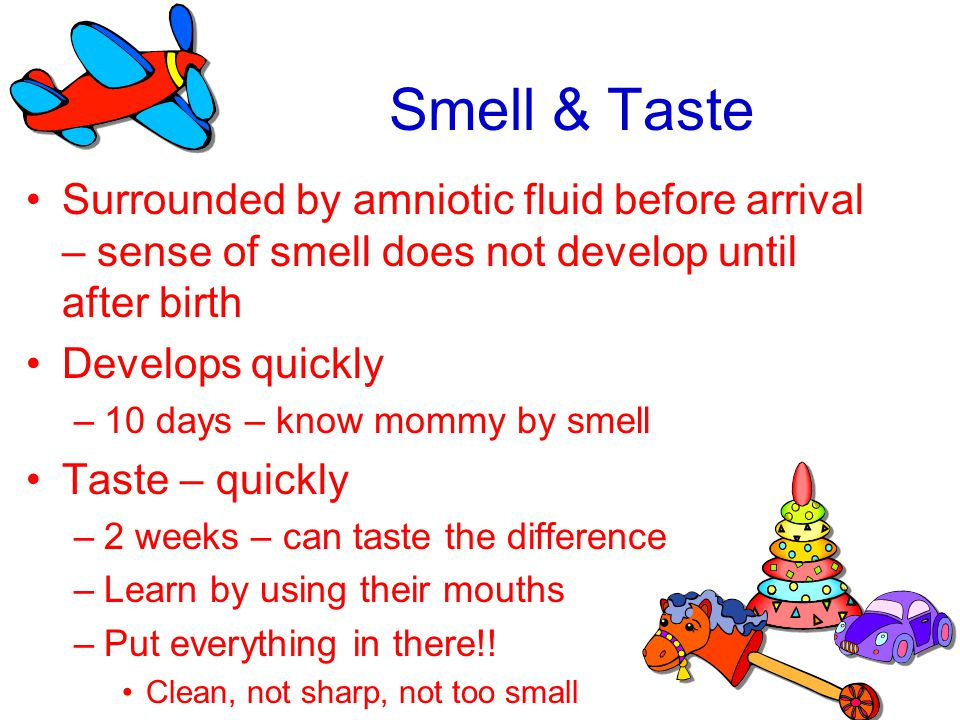 Smell & Taste Surrounded by amniotic fluid before arrival – sense of smell does not develop until after birth.