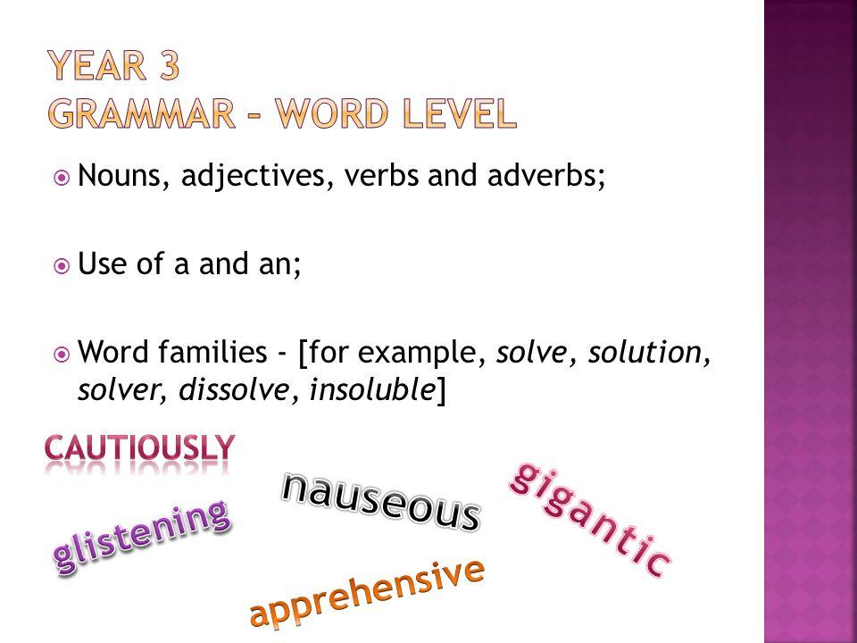 Year 3 Grammar – Word level