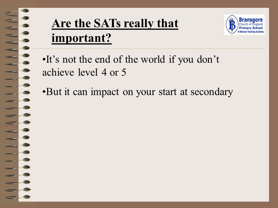 Are the SATs really that important