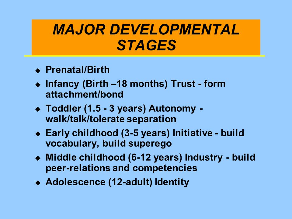 MAJOR DEVELOPMENTAL STAGES