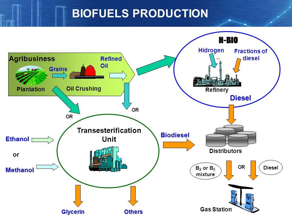 BIOFUELS PRODUCTION H-BIO Agribusiness Diesel Transesterification Unit