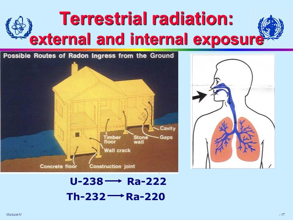 Terrestrial radiation: external and internal exposure