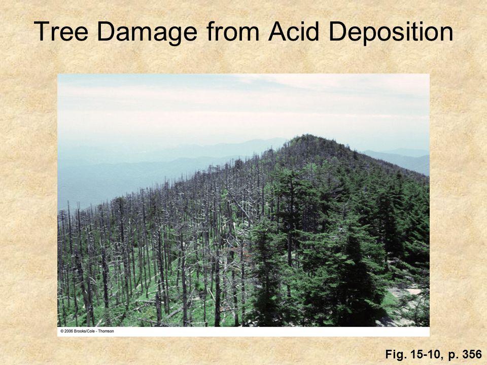 Tree Damage from Acid Deposition