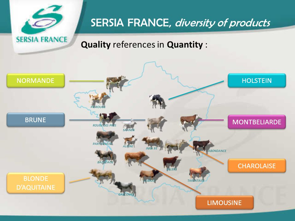 SERSIA FRANCE, diversity of products