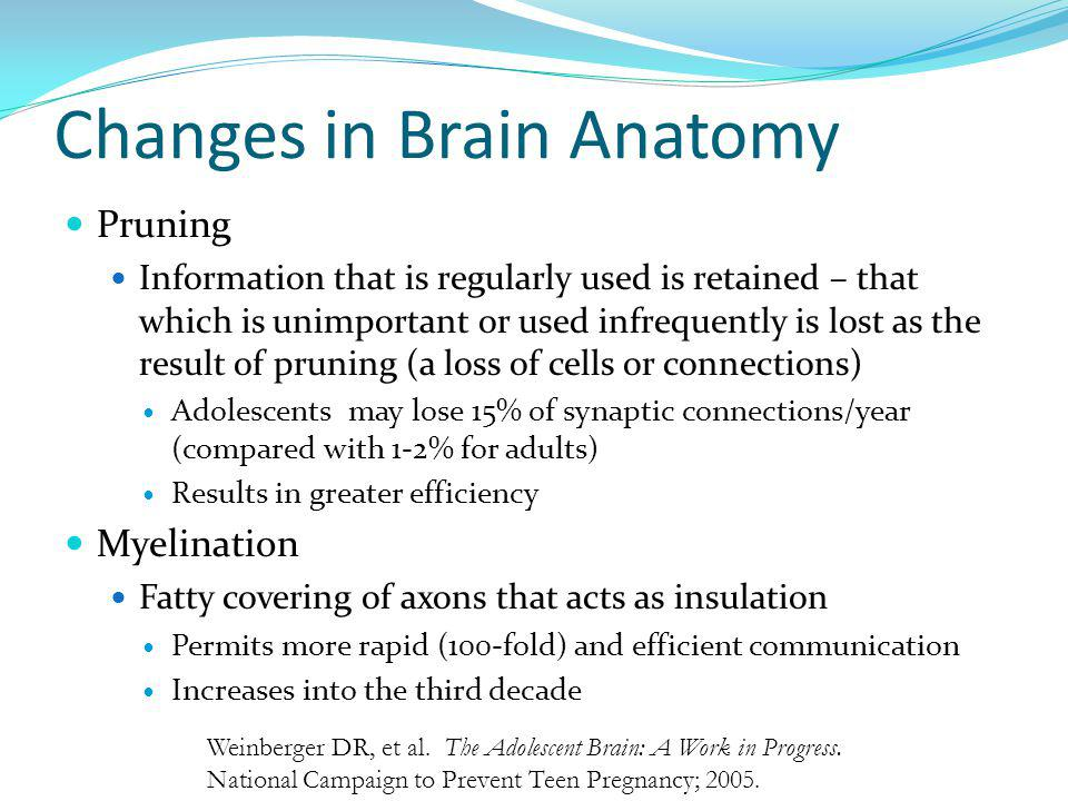 Changes in Brain Anatomy