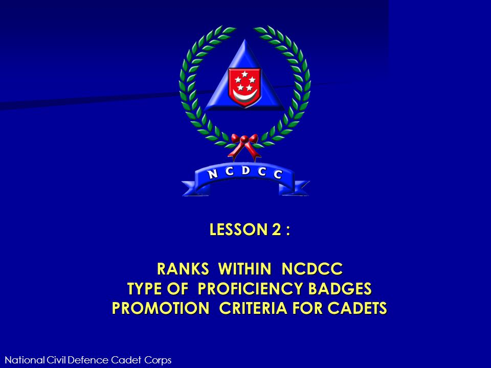 TYPE OF PROFICIENCY BADGES PROMOTION CRITERIA FOR CADETS