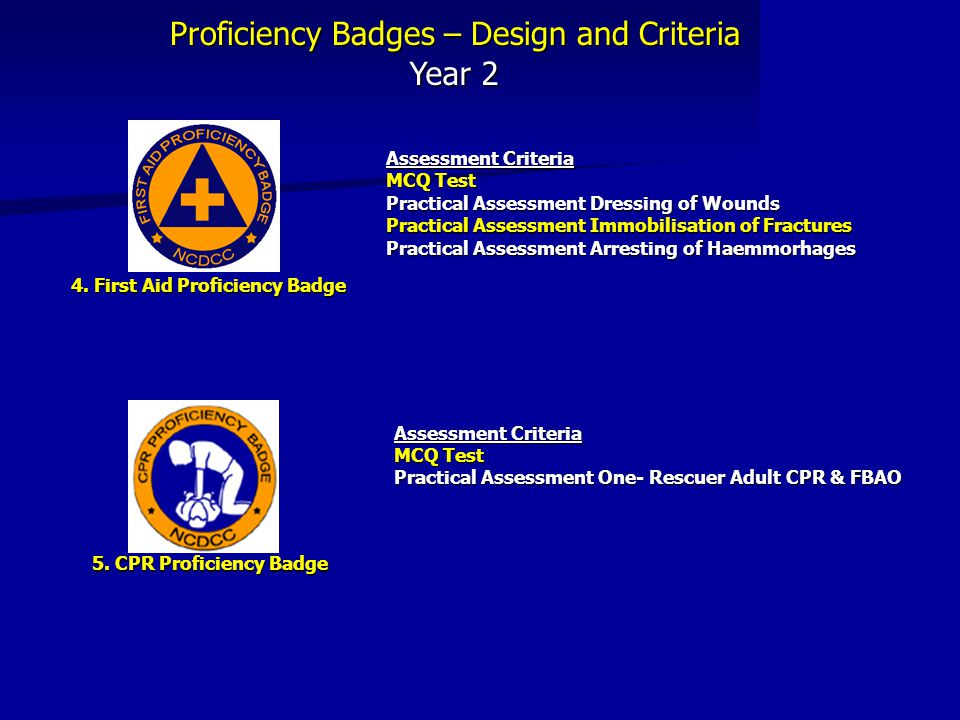 4. First Aid Proficiency Badge