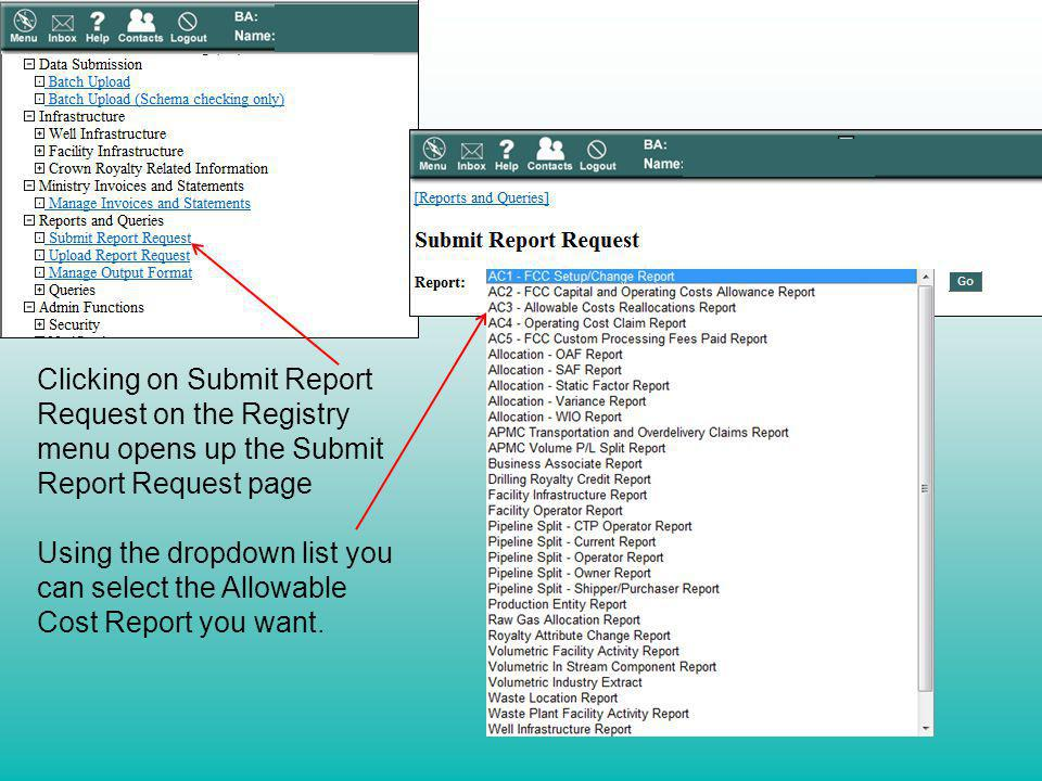 Clicking on Submit Report Request on the Registry menu opens up the Submit Report Request page