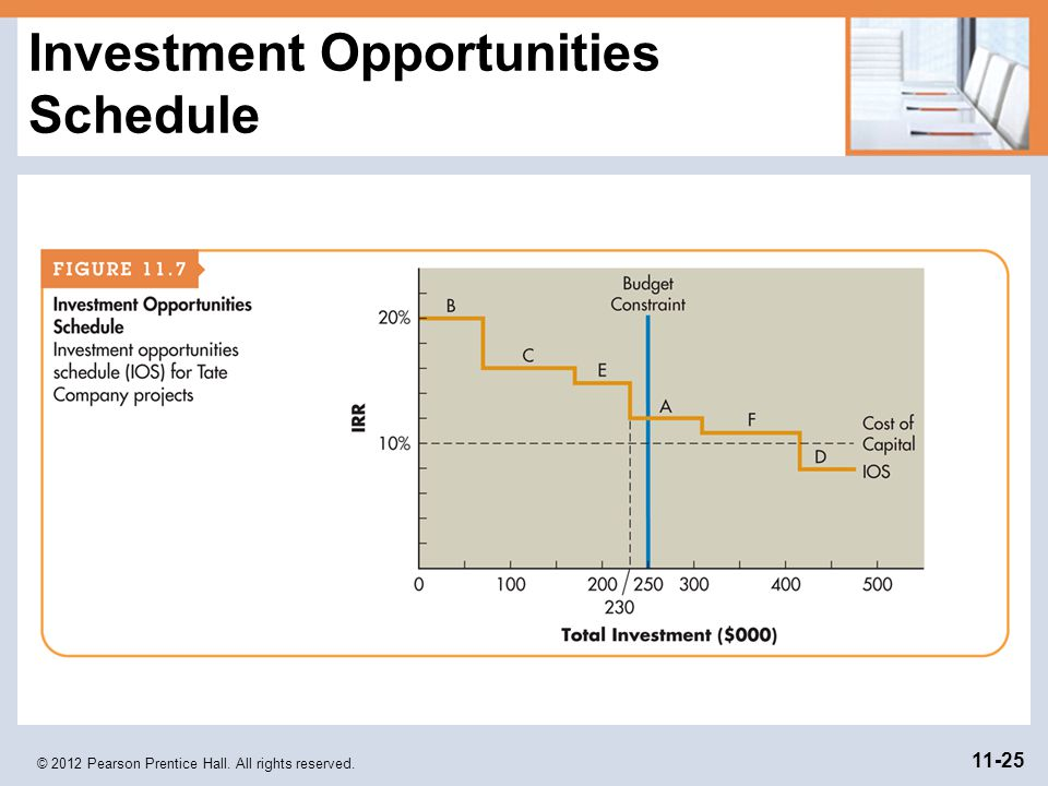 Investment Opportunities Schedule