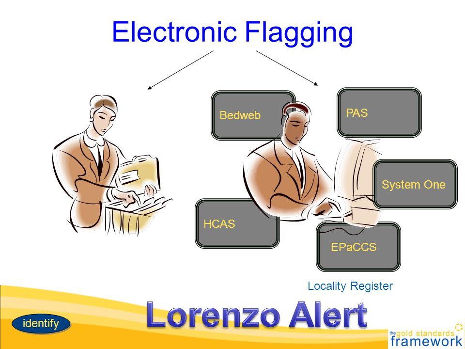 Lorenzo Alert Electronic Flagging PAS Bedweb System One HCAS EPaCCS