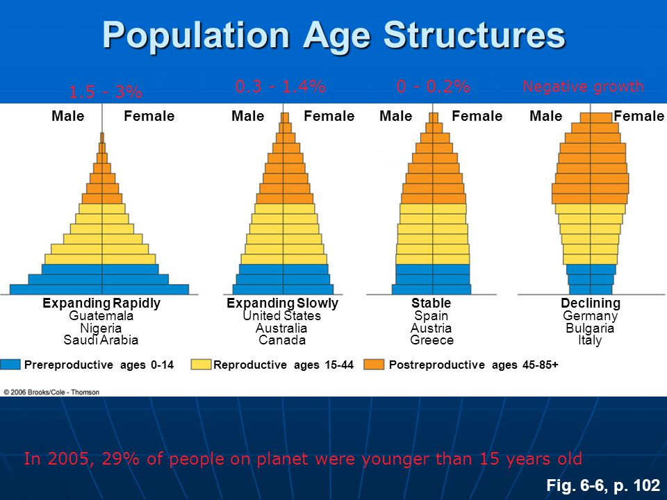 Population Age Structures