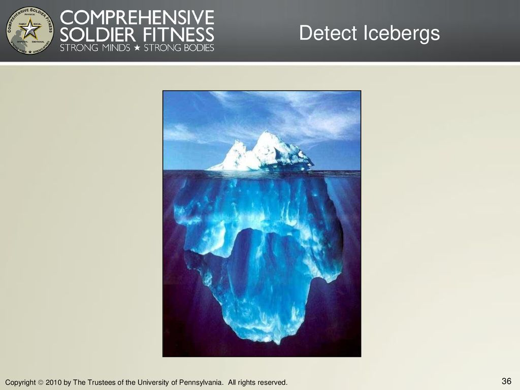 Detect Icebergs Copyright  2010 by The Trustees of the University of Pennsylvania.