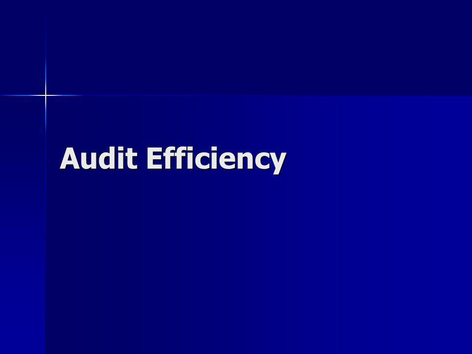 Audit Efficiency