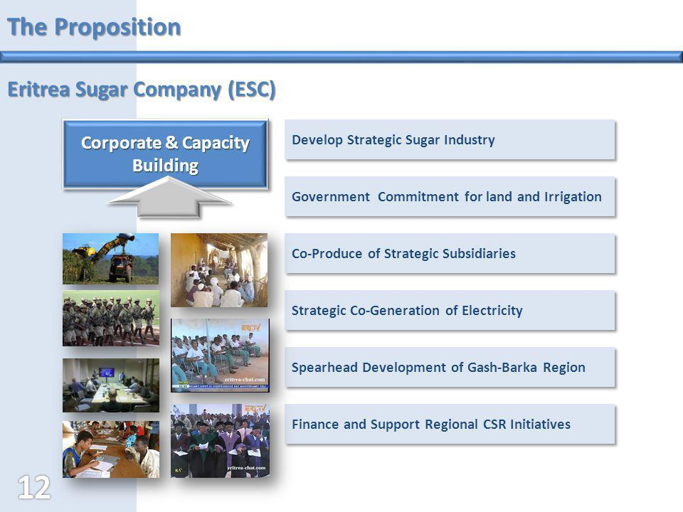 Corporate & Capacity Building