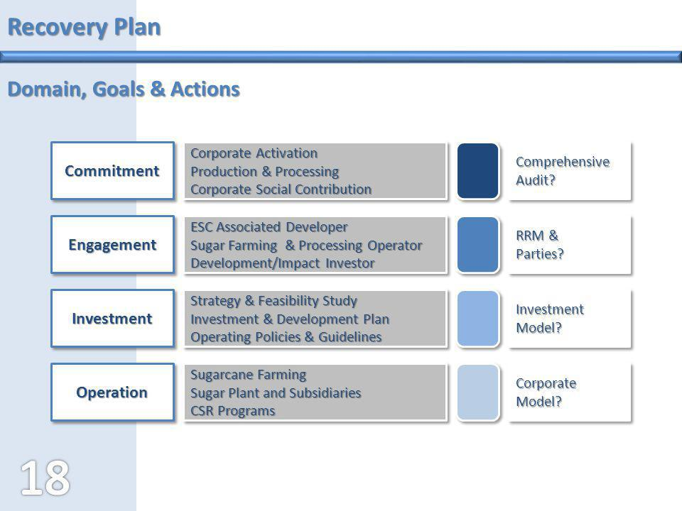 Recovery Plan Domain, Goals & Actions Commitment Engagement Investment
