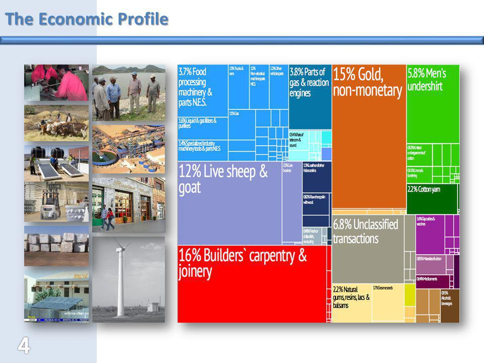 The Economic Profile