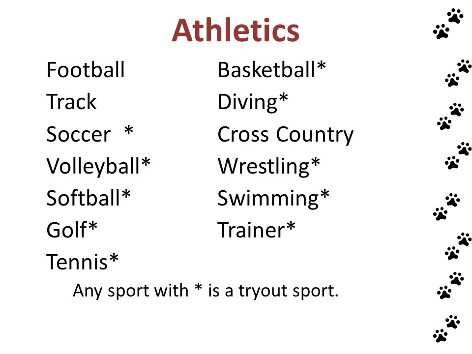 Athletics Track Diving* Soccer * Cross Country Volleyball* Wrestling*