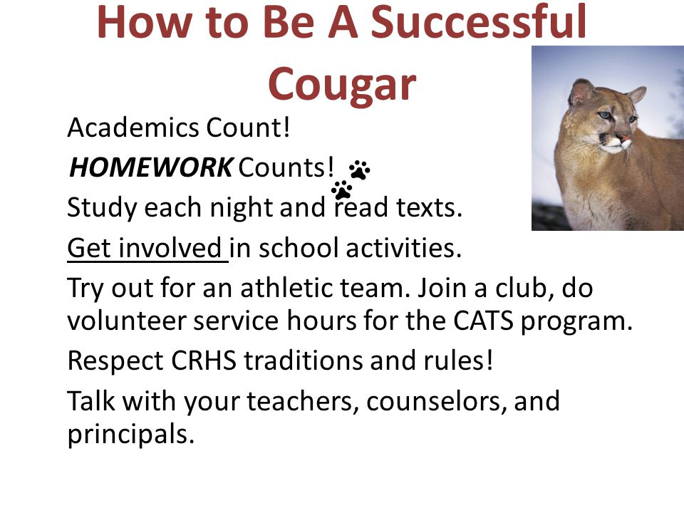 How to Be A Successful Cougar