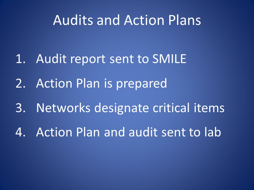 Audits and Action Plans