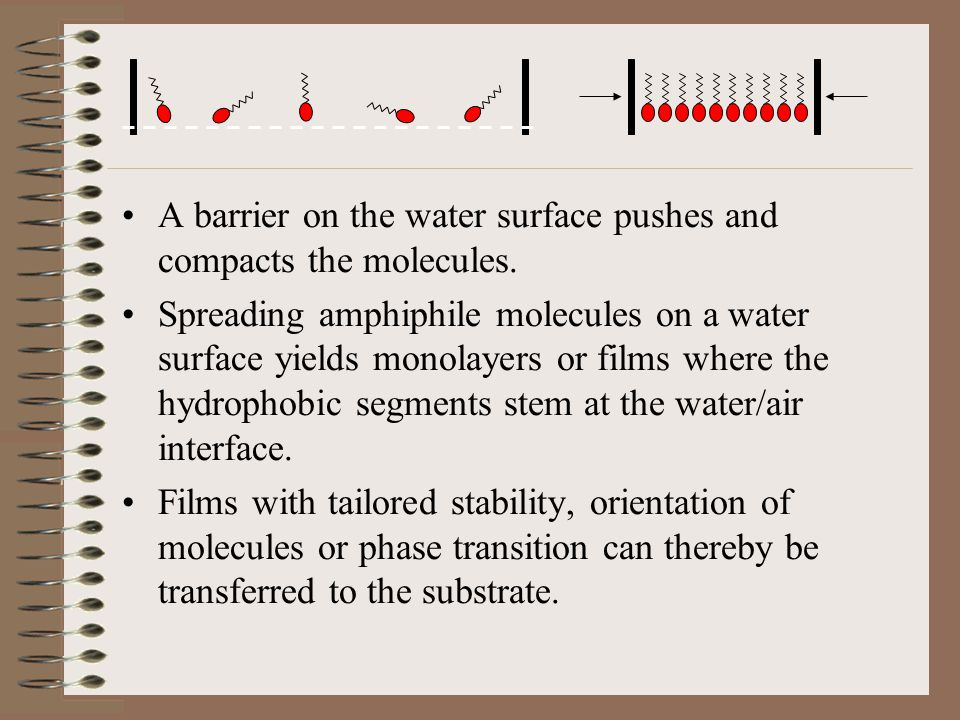 A barrier on the water surface pushes and compacts the molecules.
