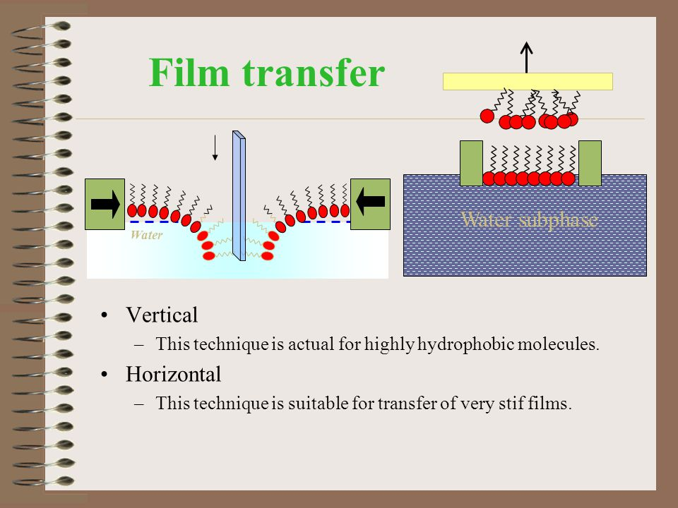 Film transfer Water subphase Vertical Horizontal