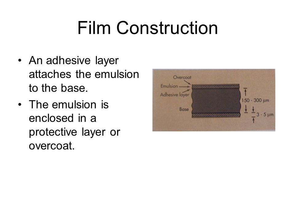 Film Construction An adhesive layer attaches the emulsion to the base.