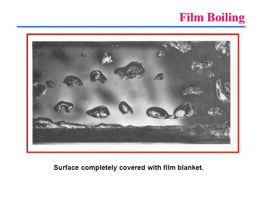 Film Boiling Surface completely covered with film blanket.