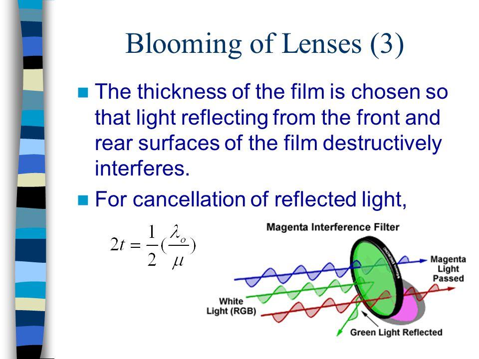 Blooming of Lenses (3)