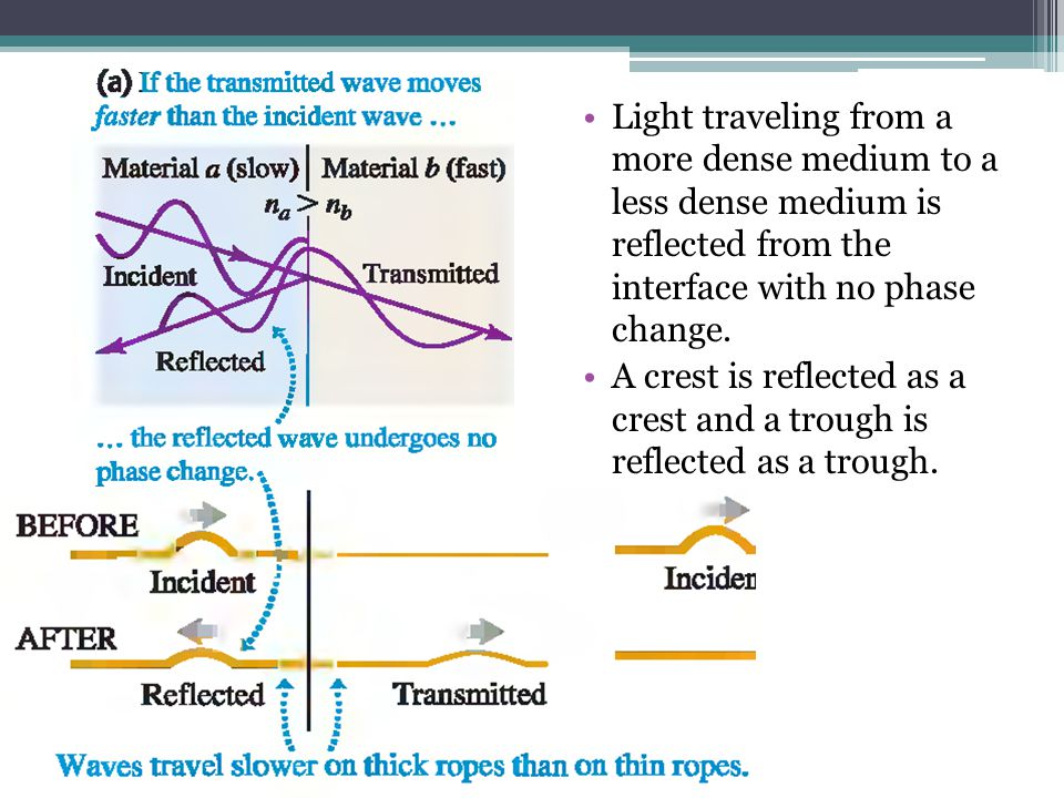 Light traveling from a more dense medium to a less dense medium is reflected from the interface with no phase change.