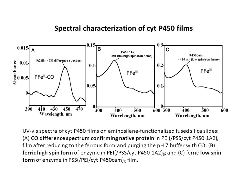 Spectral characterization of cyt P450 films