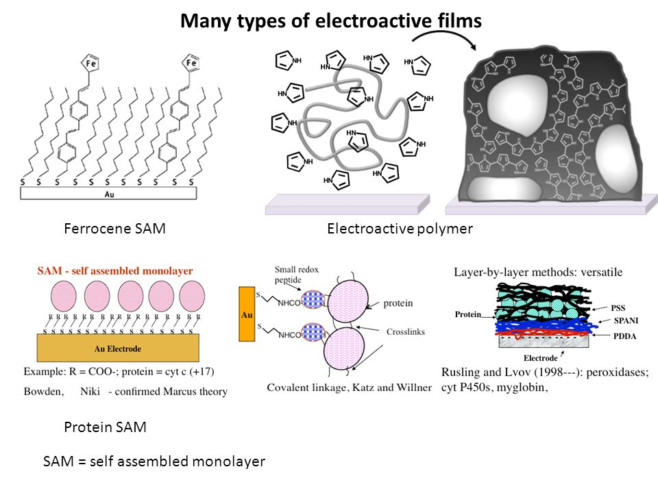 Many types of electroactive films