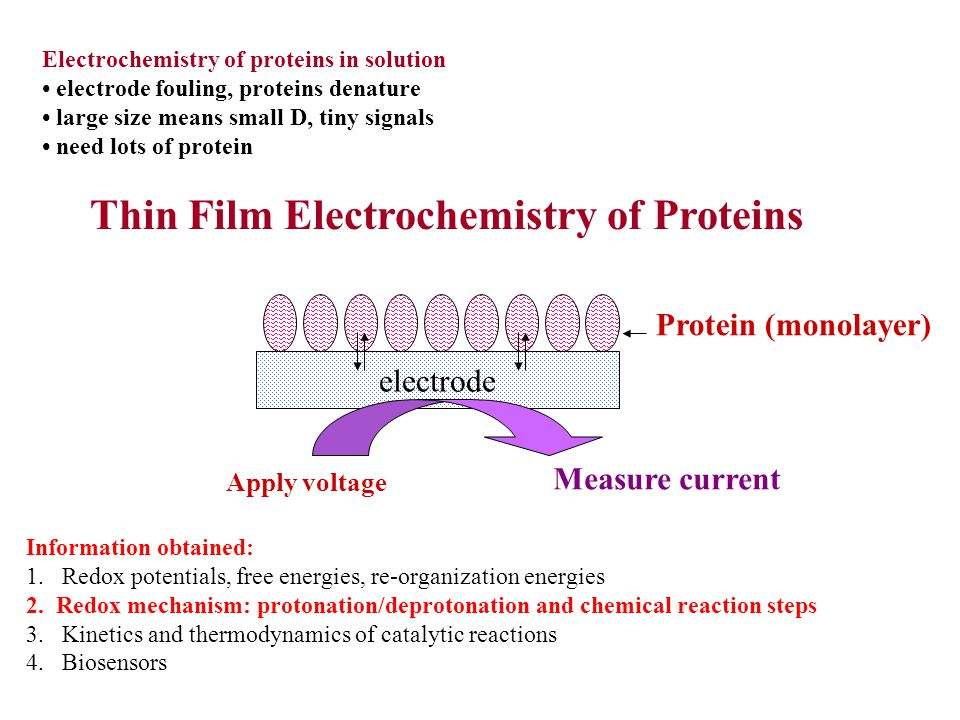 Thin Film Electrochemistry of Proteins