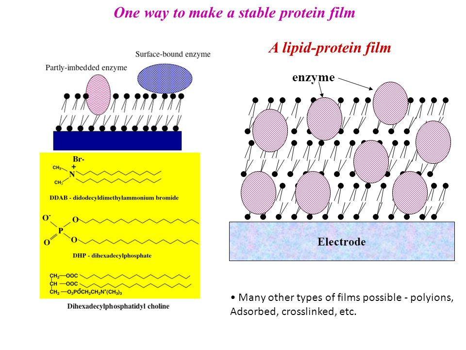 One way to make a stable protein film