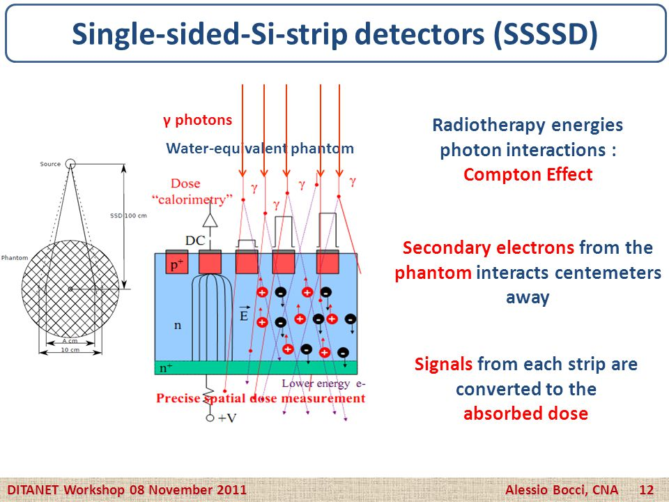 Single-sided-Si-strip detectors (SSSSD)