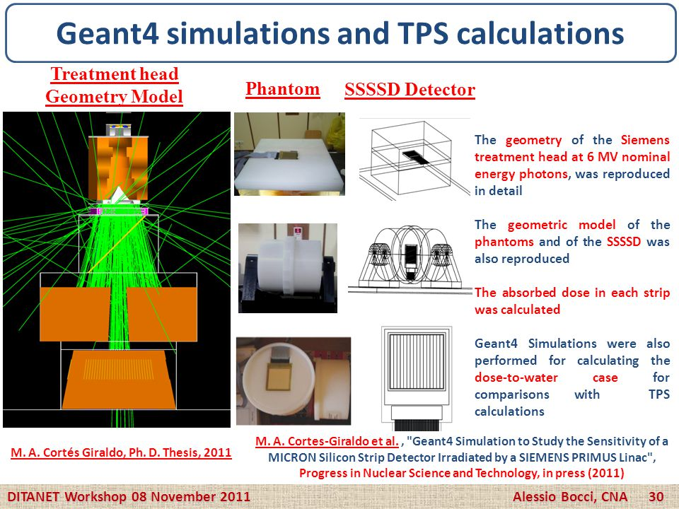 Geant4 simulations and TPS calculations