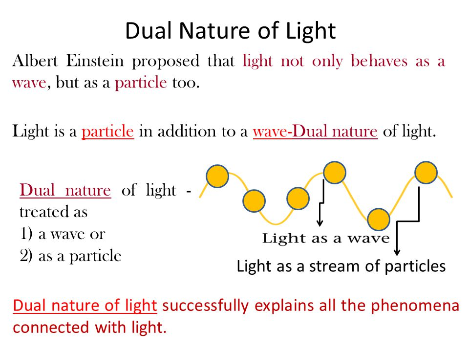 Dual Nature of Light Albert Einstein proposed that light not only behaves as a wave, but as a particle too.