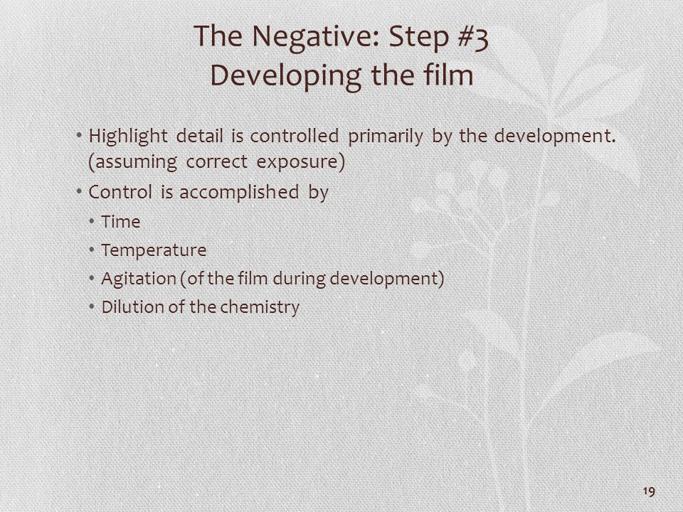 The Negative: Step #3 Developing the film