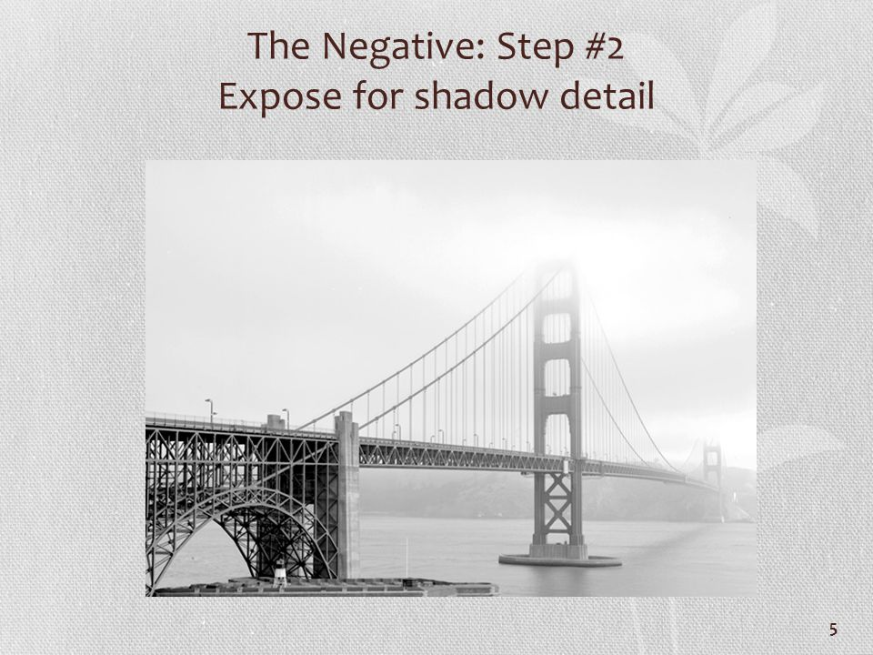 The Negative: Step #2 Expose for shadow detail