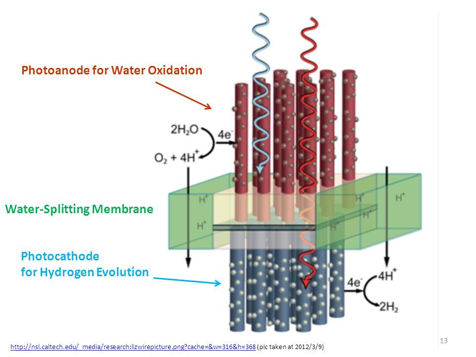 Photoanode for Water Oxidation