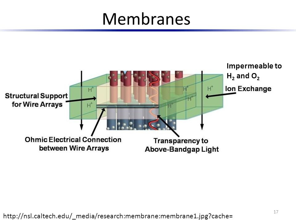 Membranes Impermeable to H2 and O2