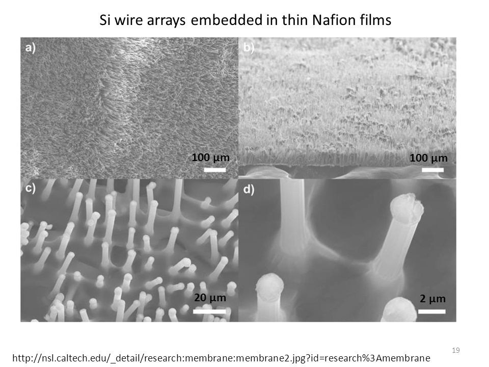 Si wire arrays embedded in thin Nafion films