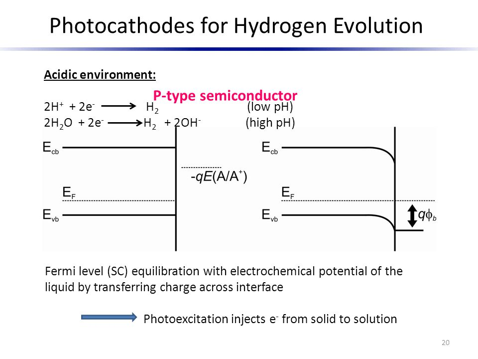 Photocathodes for Hydrogen Evolution