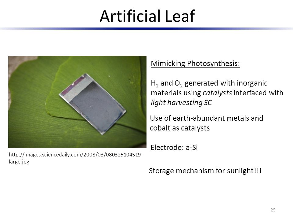 Artificial Leaf Mimicking Photosynthesis:
