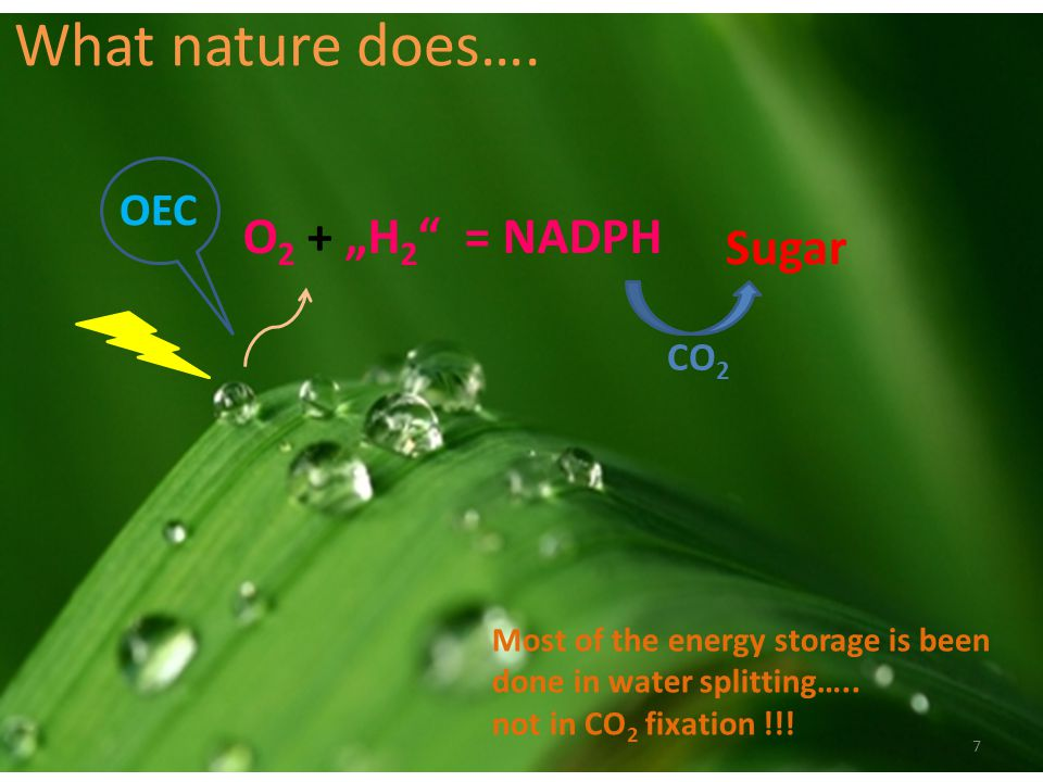 "What nature does…. O2 + ""H2 = NADPH Sugar OEC CO2"