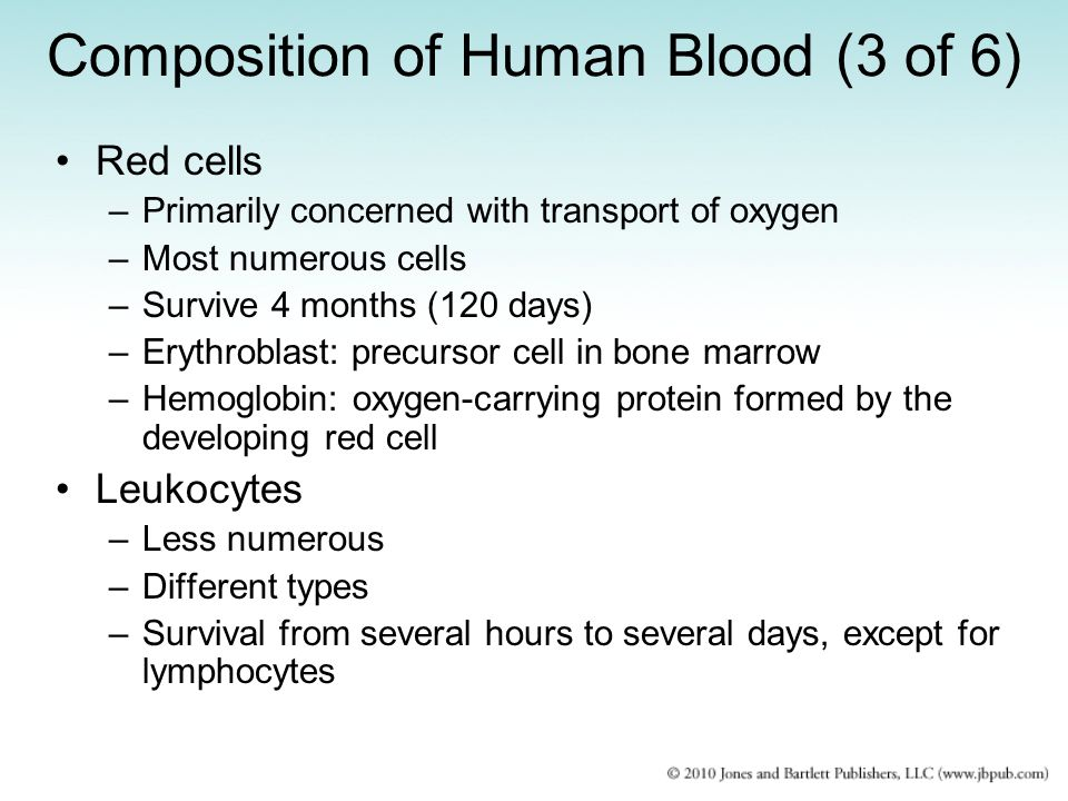 Composition of Human Blood (3 of 6)