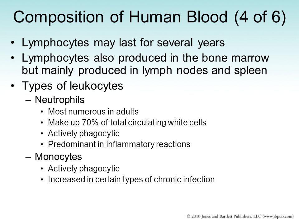 Composition of Human Blood (4 of 6)