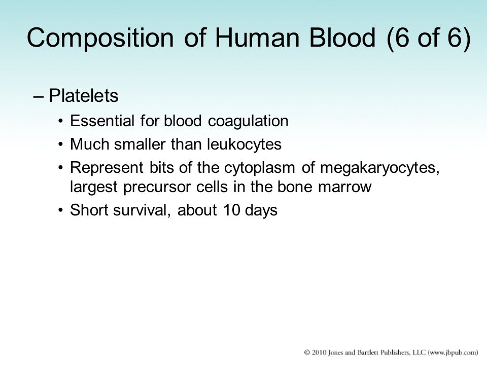 Composition of Human Blood (6 of 6)
